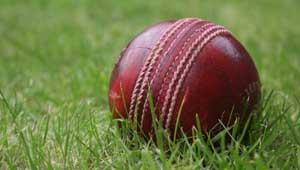 क्रिकेट- टी-20