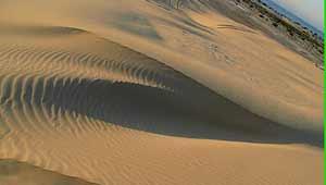 रेगिस्तान