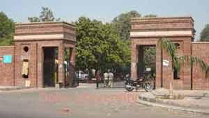 दिल्ली विश्व विद्यालय