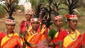 कोरवा जनजाति-कोरबा
