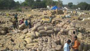 धान खरीदी-रतनपुर