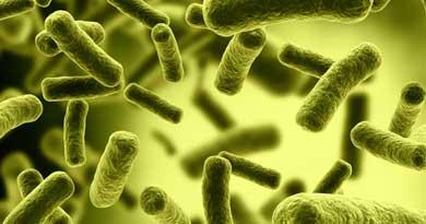 most threatening superbugs