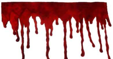 सीआरपीएफ आतंकी हमला बांदीपोर कश्मीर