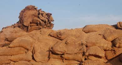 धान चावल घोटाला FCI